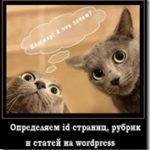 Узнаем id статьи, страницы и рубрики на wordpress